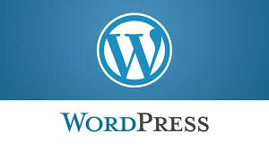 WordPress-Expert
